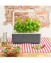 Click and Grow chytrý květináč pro pěstování bylinek, zeleniny a ovoce, šedý